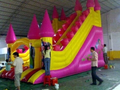 Pink Tower Slide