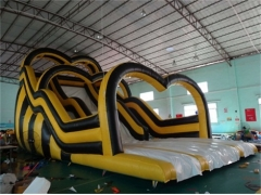 Giant Inflatable Racing Slide
