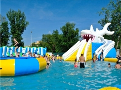 Inflatable Shark Water Park